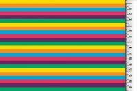 Bw-Jersey Regenbogen streifen