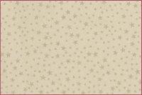 Weihnachten Baumwolle Sterne weiß/silber
