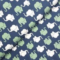 Baumwoll Jersey Elefanten Parade blau/pistazie